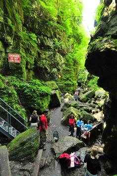 Scenic caves near Toronto. Zip lines, gem mining, adventure playground. Wasaga Beach, Weekend Hiking, Toronto Photography, Ontario Travel, Canadian Travel, Nature Adventure, Day Trips, Weekend Trips, The Great Outdoors