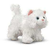 Pixie the White Persian Kitten White Persian Kittens, White Kittens, Stuffed Animal Cat, Pet Life, Exotic Pets, Cat Breeds, Baby Dolls, Pixie, Teddy Bear