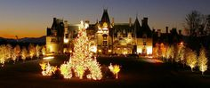 Christmas at the Biltmore Estate in Asheville, NC.  Quite a site to see!