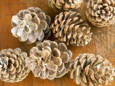 Artistic Endeavors 101: Bleached pinecones