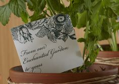 Herb Plant Favors. Give your baby shower guests a gift that keeps on growing.