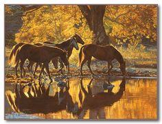 """Autumns Amber Glow"" Tim Cox - Western Art http://timcox.com/1108.html#"