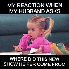 Check out: Funny Memes - My reaction when. One of our funny daily memes selection. We add new funny memes everyday! Bookmark us today and enjoy some slapstick entertainment! Memes Historia, Single Sein, I'm Single, Still Single, Why Are You Single, Single Girls, Teacher Memes, School Teacher, Just For Laughs