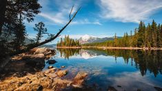 Lake Wenatchee WA - x landscape Nature Photos Cool Pictures, Cool Photos, Beautiful Pictures, Cascade Mountains, Lake Worth, Crystal Clear Water, Outdoor Recreation, Photos Of The Week, Pacific Northwest