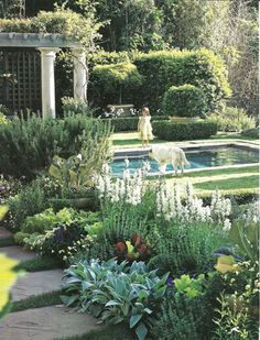 gorgeous landscaping around stone pool (AD)