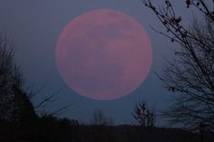 Strawberry Moon in Helen, GA.:: June 13 was when it was full this year. It continues to be gorgeous as it begins to wane. 6/17/14