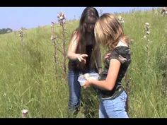 Identifying and Harvesting Wild Thistle - This girl is one of my favorites. She's just amazing. :)