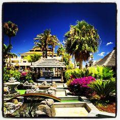 Fantastic view of our hotel from the mini-golf... Fantásticas vista de nuestro hotel desde el mini-golf... #hotel #minigolf #nature #holidays #tenerife #spain #españa