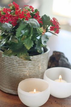 Wax Candle Bowl