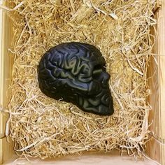 #skullbrain black in wooden box!! Go to www.artandtoys.com #porcelain made in #limoges  @byemiliogarcia  #art  #artist  #artistic #artists #arte  #beautiful #savoirfaire #excellence