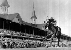 Secretariat..... Secretariat's win at Churchill Downs put him in position to become the first Triple Crown winner in 25 years.  Read More: http://sportsillustrated.cnn.com/more/photos/1306/classic-photos-of-secretariat//5/#ixzz30cCbkOGS