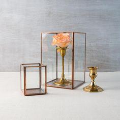 Taj Display Box