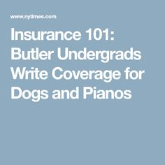Insurance 101: Butler Undergrads Write Coverage for Dogs and Pianos