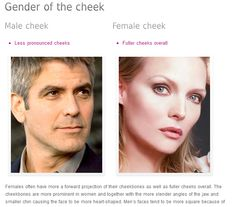 how to get defined cheekbones male