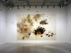 Cia Guo Qiang- gunpowder art