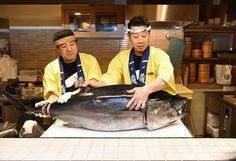 Check out the everyday's maguro tuna dismantling show at this famous restaruant in Kabukicho, Shinjuku!  #japankuru #maguro #food #tuna #simcard #100tokyo #cooljapan #マグロ #美味しい #プレゼント #黑鮪魚 #美味料理 #免費 #日本 #旅行 #美食
