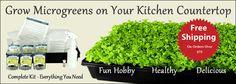 Microgreen Hydroponic Kit