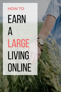 Want to live large on the internet? I've created a list of the top 10 ways to earn money online so you can have money for all the things you want in life. See more inside.