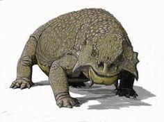 Resultado de imagen para scutosaurus