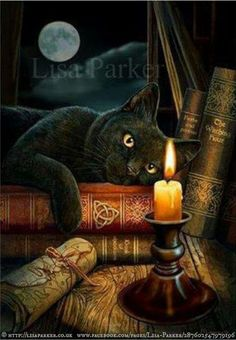 Black cat & books. © Lisa Parker (Artist. UK) via her site. Also at: www.facebook.com/pages/Lisa-Parker/287602547979196 Halloween image. Imprinted gift items available at various online shops. [Do not remove caption. The law requires you to credit the artist. List/Link directly to artist website.] PINTEREST on copyright: http://www.pinterest.com/pin/86975836526856892/ HOW TO FIND an image's original artist & website: http://www.pinterest.com/pin/86975836525507659/