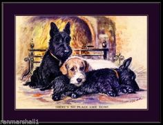 English Picture Print Sealy Scottish Terrier Dog Art