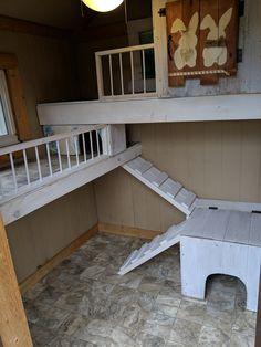 Diy Bunny Cage, Diy Guinea Pig Cage, Bunny Cages, Rabbit Cages, Bunny Sheds, Rabbit Shed, House Rabbit, Pet Rabbit, Diy Cat Enclosure