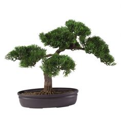 Nearly Natural Artificial Bonsai Tree (78 AUD) ❤ liked on Polyvore featuring home, home decor, floral decor, artificial ficus tree, artificial spiral trees, fake bonsai tree, faux tree and ficus tree