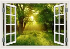 Wall Decals - Tree Landscapes