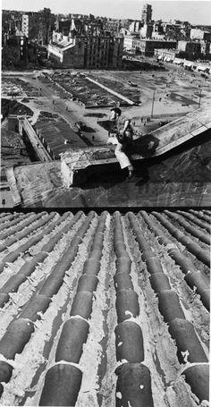 Warszawa 1946. John Vachon na dachu hotelu Polonia, za nim teren, na którym w latach 1952–55 powstaną plac Defilad oraz Pałac Kultury i Nauki. W prawym górnym rogu handlowa parterowa zabudowa wzdłuż ulicy Marszałkowskiej, w tle uszkodzony wieżowiec Prudentialu, fot. John Vachon, archiwum prywatne Ann Vachon - photo 6