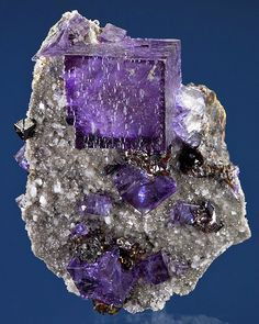 Fine specimen of glowing Fluorite cubes with Sphalerite on sparkling Doloston :: From the Elmwood Mine, Smith County, Tennessee.