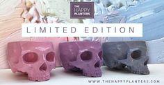 NEW PASTEL SKULLS!! What's your favorite?  #skull # planter #skulllovers #pink #purple #blue @happyplanters