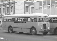 The Passenger Transport Co Ltd Ford Buses Ford V8, Auckland New Zealand, Buses, Transportation, Australia, Trucks, History, Busses, Historia