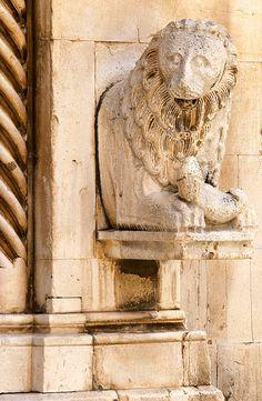 'o lione a Visso by enricoerriko, via Flickr Uno dei leoni in pietra che proteggono l'entrata della cattedrale di Visso.