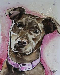 'Beane' - 8 x 10 watercolor on Yupo paper by Shaina Kay Stinard - Artist Making your photos a work of art!  Custom portraits of people, pets and places.  www.shainastinardartist.com, email: shainastinard@yahoo.com