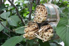Nach unseren beiden sehr einfachen Insektenhotel-DIYs letzte Woche, wird es diese Woche bereits etwas anspruchsvoller. Aber keine Sorge: Auch diese beiden Varianten lassen sich super einfach zu Hause nachmachen. Unser Topf-Hotel ist für Ohrwürmer – auch Ohrwuzler und Uanschliafer genannt – gedacht und unser Dosen-Hotel mit Bambus soll eine Nisthilfeweiterlesen …