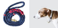 Modern Handmade Rope Collars and Leashes by Lasso