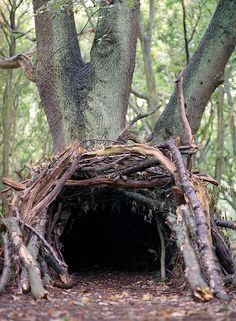 Are you brave enough to enter and see what lies within? Does this hole belong to Hobbits, Hobgoblins, Kabolds or Tommy-knockers?