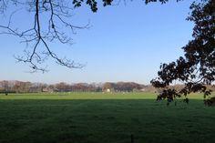 2014-11-01 Uitzicht richting De Eikelhof nabij landgoed Boxbergen
