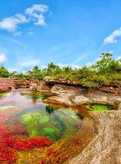 The Liquid Rainbow River Caño Cristales, Colombia. To book go to www.notjusttravel.com/anglia. Mucho más sobre nuestra hermosa Colombia en http://www.solerplanet.com