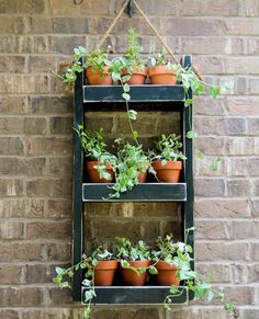 The Best Indoor Herb Garden Ideas for Your Home and Apartment (No 41)