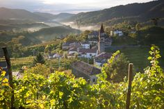 Best Places to Go in Northern Italy's Veneto Region