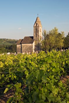 Egregy Church with Wineyard, Heviz (Hévíz), Hungary Wine Tags, World Photo, Wineries, Bridges, Budapest, Barns, Tuscany, Monument Valley, Vineyard