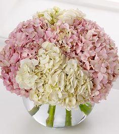 hydrangea and rose bouquet pink white Pink Hydrangea Bouquet, Hydrangea Not Blooming, Hydrangea Centerpieces, Rose Bouquet, Hortensien Arrangements, White Flower Arrangements, Ideas Bautizo, Flower Delivery, Wedding Decorations