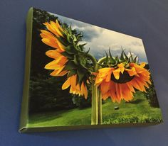 Sunflower Stretched Canvas Print by BlueHydrangeaCanvas on Etsy Stretched Canvas Prints, Unique Jewelry, Handmade Gifts, Painting, Etsy, Vintage, Art, Kid Craft Gifts, Art Background