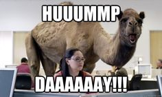 Guess what day it is? Makes me laugh every time.