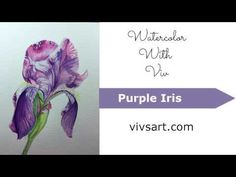 (36) Watercolor Painting Demo Of Purple Iris - YouTube