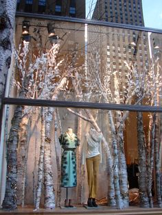 Anthropologie window- birch tree forest display