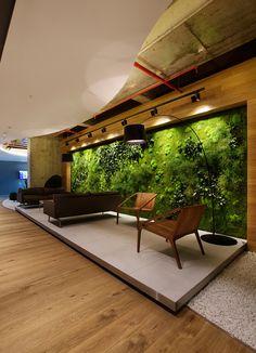 Zielona ściana z mchu i paproci stabilizowanych.