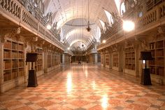 TM Zink (Died 1930) Library Of The National Palace Of Mafra