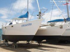 17 Best Catamaran Trimaran images in 2018 | Sailing ships, Catamaran